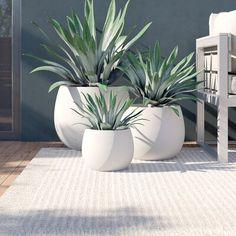 Modern Landscaping, Front Yard Landscaping, Patio Plants, Indoor Plants, Outdoor Planters, Planter Pots, Backyard Garden Design, Plant Decor, Container Gardening