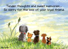 words of grief for dog | Sympathy Cards for Pets