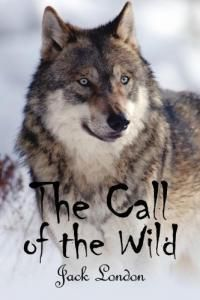 The call of the wild essay questions