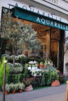Boutique Aquarelle.com, 36 avenue Hoche, Paris 8e.