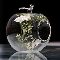 Apple Shape Flower Glass Vase Moss Micro Landscape Eco Bottle   BidderFace