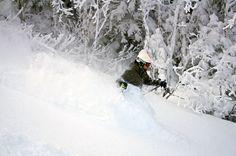 worth skis. Loving Snowvember