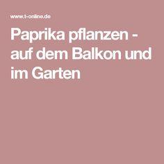 Paprika pflanzen - auf dem Balkon und im Garten Gardening, Food, Rooftop Terrace, Red Peppers, Plants, Lawn And Garden, Essen, Meals, Yemek