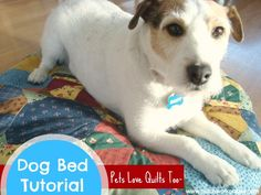 Sew a dog pillow using orphan quilt blocks or patchwork fabric. Pets love quilts too!
