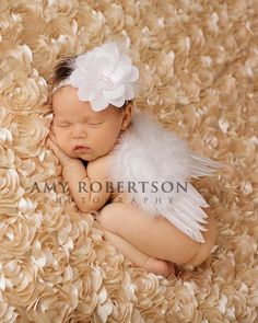 Inspiration For New Born Baby Photography : Gorgeous & Co. Dream Angel Wing Set New Born Baby Photography Picture Description Dream Angel Luxury Feather Wing Set for Newborns- this … Newborn Fotografia, Foto Newborn, Newborn Shoot, Newborn Pictures, Baby Pictures, Newborn Pics, Cute Babies, Baby Kids, My Bebe