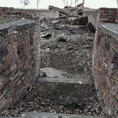 Auschwitz II-Birkenau. Entrance to the underground changing room of the crematorium and gas chamber III.