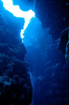 SCUBA diving in Niue: Caves and sea snakes under the sea — Deviating the Norm