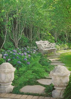 Hydrangeas and ferns under trees