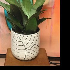 MADE TO ORDER - Mid-size black leaf carved ceramic planter - modern wheel thrown pottery planter - modern ceramics - minimalist pottery White Planters, Modern Planters, Succulent Planters, Pottery Pots, Thrown Pottery, Seattle, Black And White Leaves, White Leaf, Large Ceramic Planters
