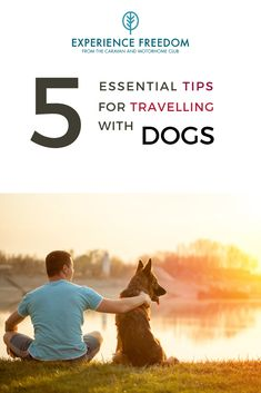 Camping with your dog can be an amazing experience: sharing adventures. However, transporting your dog on camping trips can mean using a car, and if you're not familiar with the best ways to help your dog cope with car travel, the experience can be stressful and dangerous both for them and for you. Want to go driving with your dog, whether as part of a short camping weekend or a two-week excursion? Make sure you do it safely. Glamping Uk, Glamping Holidays, German Shepherd Pictures, German Shepherds, Go Drive, Dog Travel, Travel Tips, Hiking Dogs, Big Dogs