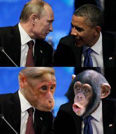 Kad majmuni drmaju svjetskim gospodarstvom i politikom…