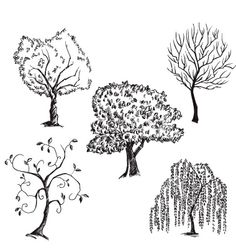 Trees collection vector - by kamenuka on VectorStock®