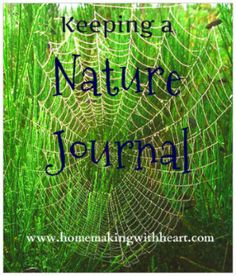 """Keeping a Nature Journal"" - getting started, what to record, and ideas for younger and older children. homemakingwithheart.com"