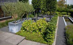 Hoogteverschillen tussen bovengedeelte en lager gelegen tuin zijn opgevangen met trappen en basaltblokken. De secundaire paden van basaltsplit zorgen voor verticale afvoer van water.