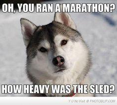 You Ran A Marathon?