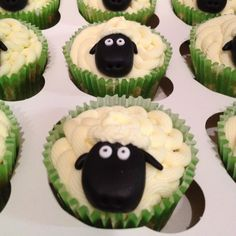 Sheep 'timmy time' cupcakes