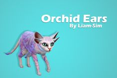 "liam-sim:  "" You loved it, so I made it !!  Orchid Ears: From the most beautiful Sixam's flower.  Download: SFS (no ad-fly)  """