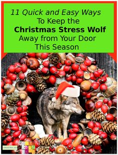 11 Great tips to help keep chaos out of your life and money this Christmas. Features a FREE Budget form too