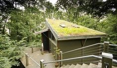 See More 20 Stunning Green Roof Ideas https://homadein.com/2017/03/10/20-stunning-green-roof-ideas/
