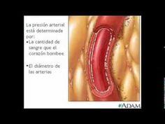 Remedio para la tensión alta o hipertensión