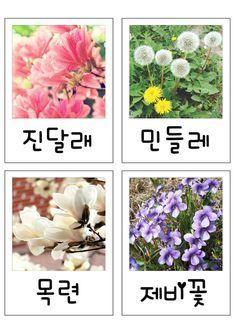 [엄마표 만들기] 봄카드 : 네이버 블로그
