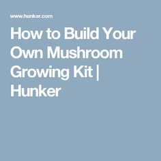 How to Build Your Own Mushroom Growing Kit | Hunker