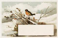Vintage Winter Bird Label