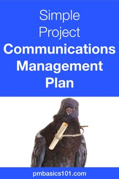 Project Communications Plan is a crucial document in project management However it should not be too complicated You can have a valuable communications plan by answering. Project Management Templates, Management Tips, Writing A Cv, Customer Lifetime Value, A Simple Plan, Marketing Approach, Successful Online Businesses, Easy Projects, Software Development
