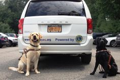 Guiding Eyes dogs Oliver (left) and Silk pose in front of the newest vehicle in Guiding Eyes for the Blind's fleet, purchased through the fundraising efforts of local Lions Club members.