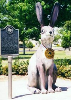 Odessa, TX. Home of the world's largest jack rabbit.