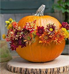 pretty front entry decorating ideas for fall flowering pumpkin decoration