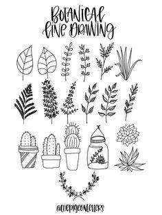 Plant doodles | bullet journal doodles | botanical doodles