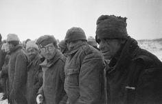 Румынские военнопленные, взятые в плен в районе станицы Распопинской под городом Калачом. 24 ноября 1942 года войска Юго-Западного фронта, разгромив окруженные там румынские войска, взяли 30 тысяч пленных и захватили много техники.