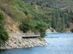 Villefort lake: Lake and mountainous bank planted with trees; in the Cévennes National Park - France-Voyage.com