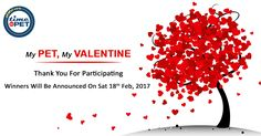 Hi, Thank you to all participants of TimeForPet- My Pet, My Valentine contest.  Have a great Valentines Day! #timeforpet #contest #mypetmyvalentine #bangalore