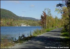 The Ashuwillticook Rail Trail is an 11 mile rail trail that goes from Adams, Massachusetts south roughly following along Route 8 to Lanesboro, Massachusetts.  Great running trail!