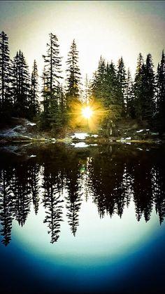 Reflection in Nature - Robert E Saddler - Google+
