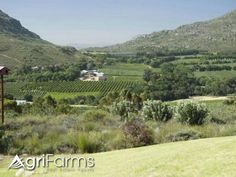 Whether you are interested in a development opportunity or simply a unique and exclusive rural lifestyle, this property offers a unique long-term fore. Conference Facilities, Plant Species, Luxury Apartments, West Coast, Farms, Equestrian, South Africa, Blueberry, Landscape