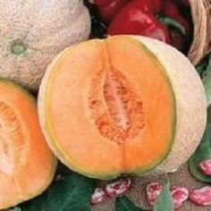 Pase Seeds - Cantaloupe Honeyrock Vegetable Seeds Pase Garden Pick, $3.29 (http://www.paseseeds.com/cantaloupe-honeyrock-vegetable-seeds-pase-garden-pick/)