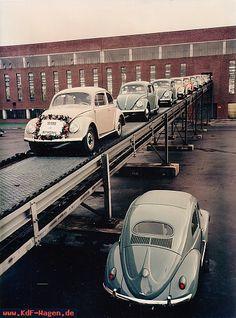 VW - 1956 - (vw_t1) - [6910]-1