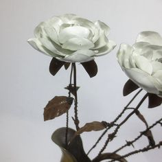 A Single Rustic White Immortal Wild Rose With by thedustyraven, $27.00