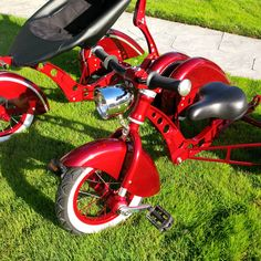The Roddler Mv5, the only stroller in the world that converts into a trike!