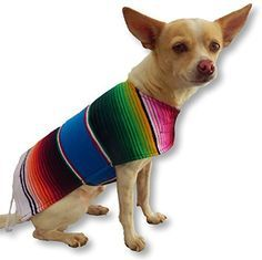 Chihuahua Clothes - Handmade Dog Poncho From Authentic Mexican Blanket. Dog Apparel with Adjustable Neck and Chest. Dog Clothes for Small and Medium Size Dogs. Pets Clothes - Puppy Clothes - Premium Quality Dogs Clothes By K9 Ponchos. (Fringed Edge, Small) - http://www.thepuppy.org/chihuahua-clothes-handmade-dog-poncho-from-authentic-mexican-blanket-dog-apparel-with-adjustable-neck-and-chest-dog-clothes-for-small-and-medium-size-dogs-pets-clothes-puppy-clothes-premium-q/