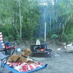 Favorite camp site