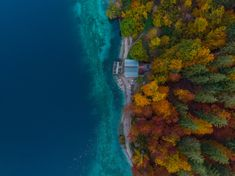 Colorful boats on lake by autumn forest , Fusine lake, aerial vi Flight Lessons, Flying Lessons, Florida International University, New Drone, Autumn Forest, Drone Photography, Aerial View, Indoor Outdoor, Boats