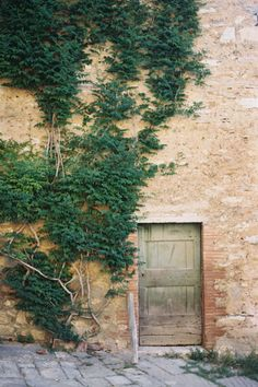 Another part of Italy we love! Rustic Garden Party, Under The Tuscan Sun, Blue Bowl, Eye For Detail, Windows And Doors, Curb Appeal, Tuscany, Scenery, Around The Worlds