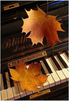 ♫♪ Music ♪♫ autumn leaves on piano