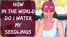 When And How To Water Seedlings - Organic Gardening Tips