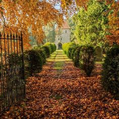 Top 10 pictures that will make you want to see Britain in autumn Country Walk, Country Roads, October Country, 10 Picture, North Yorkshire, England Uk, Travel Goals, Great View, Beautiful Landscapes