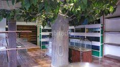 Foto 8905-img2503376-6670872. Alquiler local comercial  amplio local de esquina con gran escaparate y almacén en elche / elx